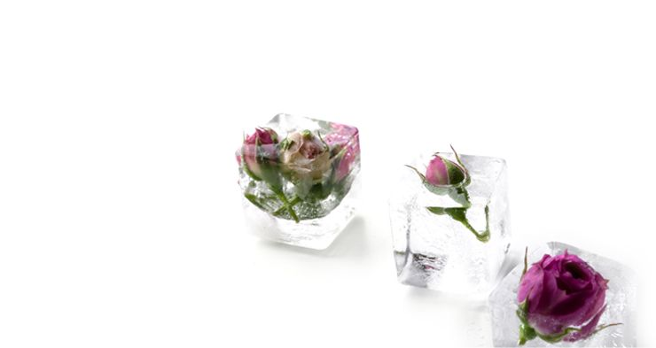 read more how to know is rose water a toner
